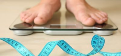 Study analyses relationship between body size and global calorie demand