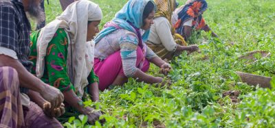 Reducing malnutrition and food waste in Bangladesh