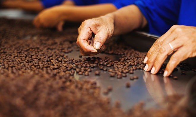 barry-callebaut-chocolate-indonesia