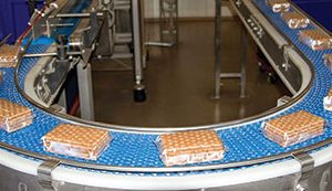 Hygienic processing for the baking industry