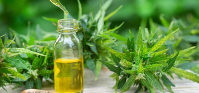 FSA calls for clearer information of CBD products