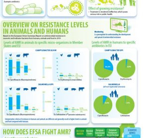 EFSA Antimicrobial Resistance Infographic