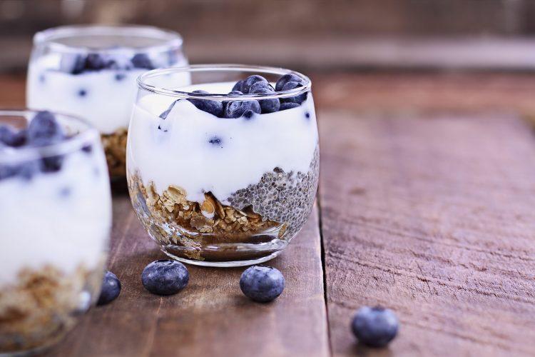 Kefir yoghurt probiotics