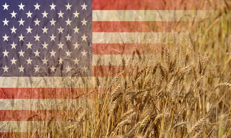 USDA expands wheat export market