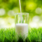 Praise for the white stuff as we celebrate World Milk Day