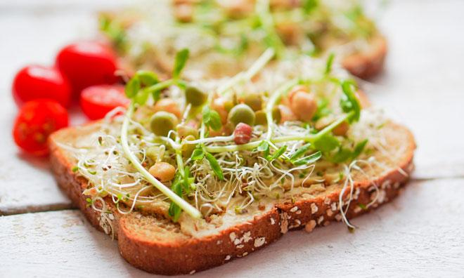 alfalfasprouts-disease-salmonella