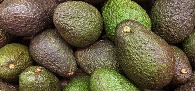 Study finds avocados may help reduce obesity and prevent diabetes
