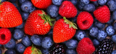 Major American berry producers commit to recyclable packaging