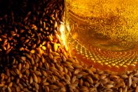 Reducing carbon footprint through sustainable brewing