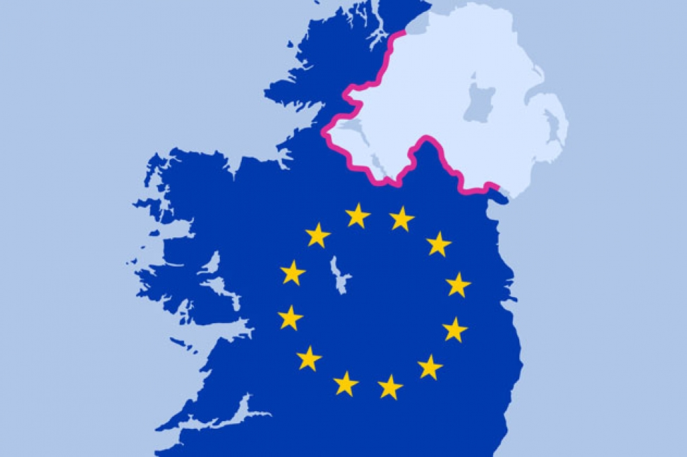 Experts warn of Brexit's impact on the Northern Irish food system