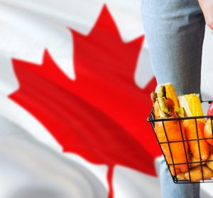 Report predicts $487 increase of food cost for Canadian families in 2020