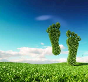 carbon neutrality image green feet