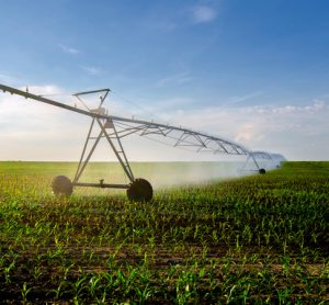New satellite-based algorithm pinpoints crop water use and management
