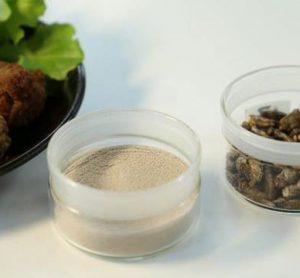 cricket-meatballs