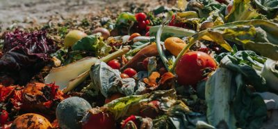 The food ingredients industry – producing  protein from waste