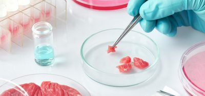 Study finds myoglobin enhances cultured meat growth, colour and texture