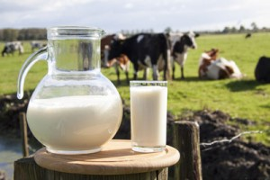 dairy-appg