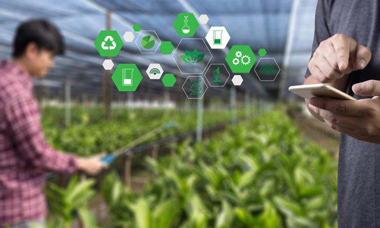 FoodDrinkEurope signs letter to EU calling for digital action