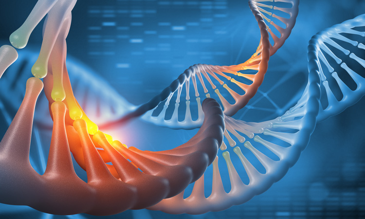 Whole genome sequencing could help control disease