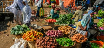 Study investigates link between child health and Ethiopian rural markets