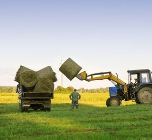 Report looks at redefining productivity and efficiency of UK farming systems