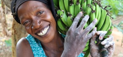 UN agencies call for action to achieve gender equality in food sector