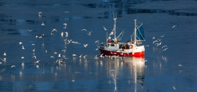 Campaigners call to stop illegal fish discards in Scotland