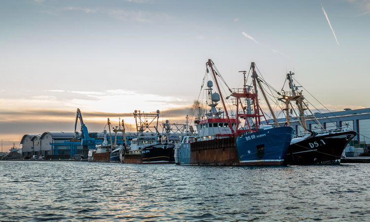 Environment Secretary launches Fisheries Bill to control UK waters