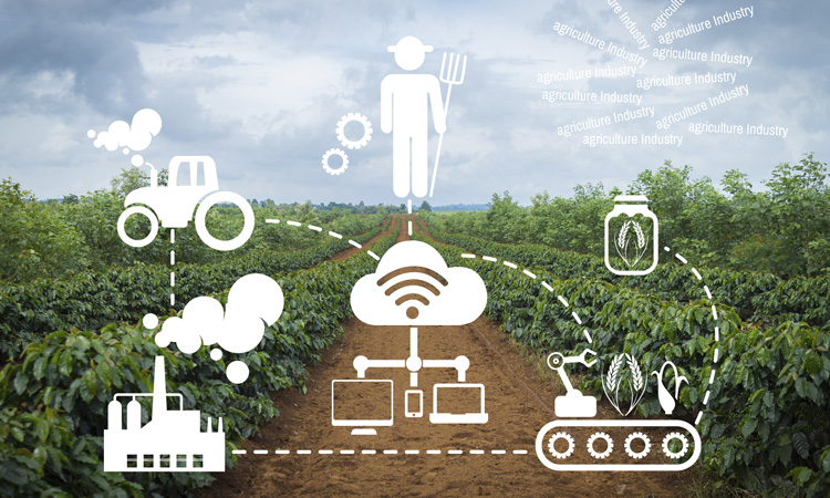 A safer, more transparent food system