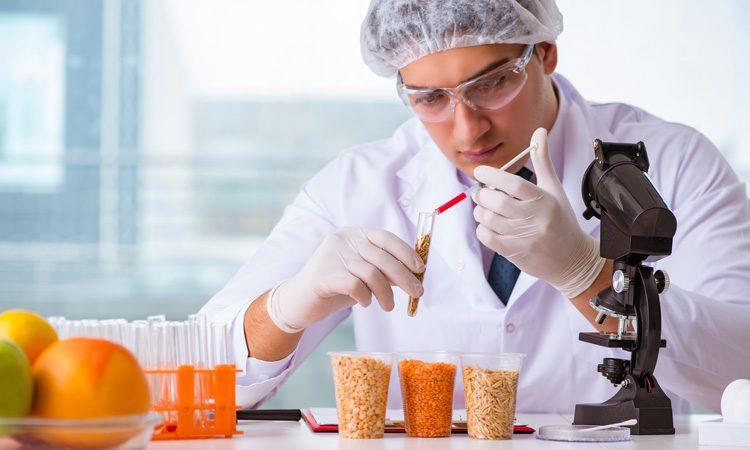 FDA launches updated Food Defence Plan Builder
