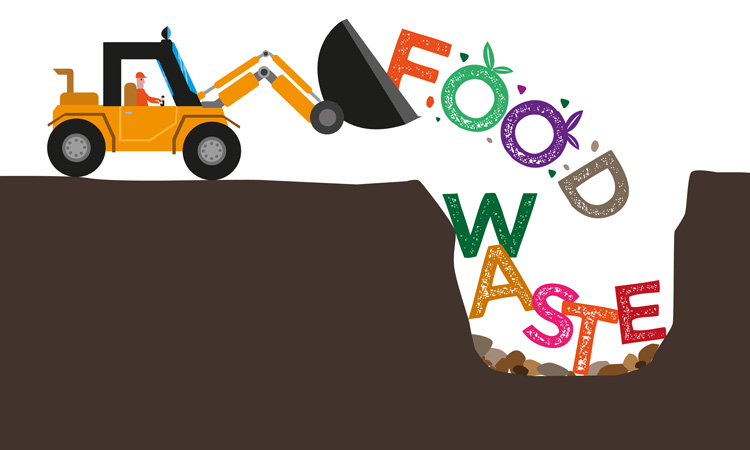EPA and USDA name six new 'US Food Loss and Waste 2030 Champions'