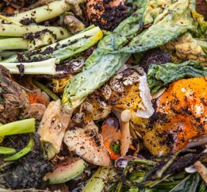 food-waste-header
