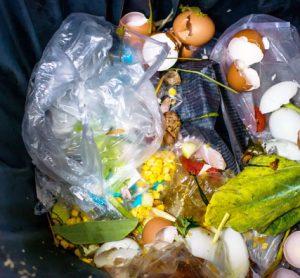food-waste-loughborough