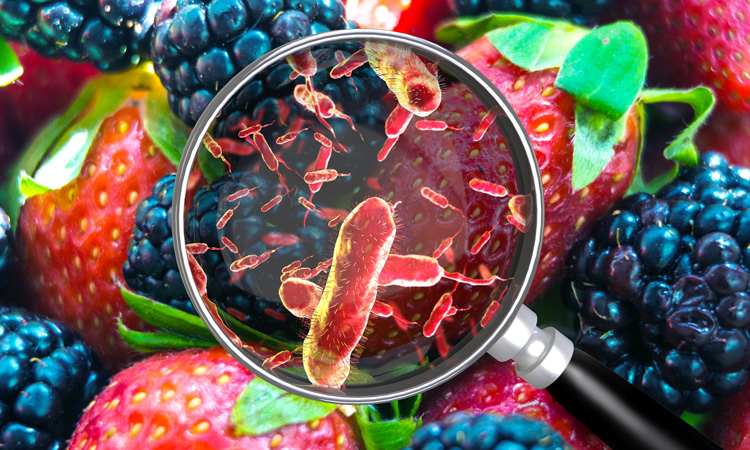 Annual IFSAC report on the sources of foodborne illness released