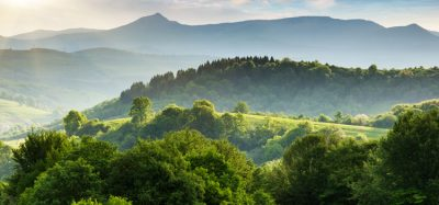 FoodDrinkEurope reaffirms commitment to be deforestation-free
