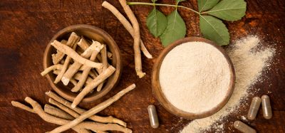 Innova Market Insights points to newly accepted 'star' ingredients