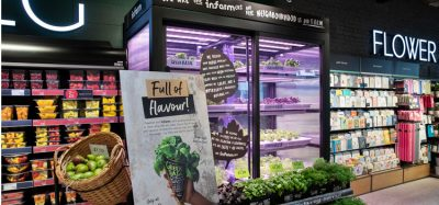 M&S to grow and harvest herbs in-store