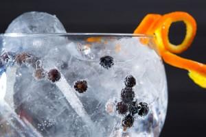 langley's-no.8-gin