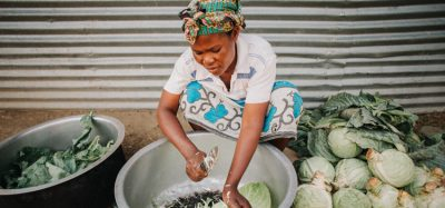 Double burden of malnutrition caused by changing food systems, says report