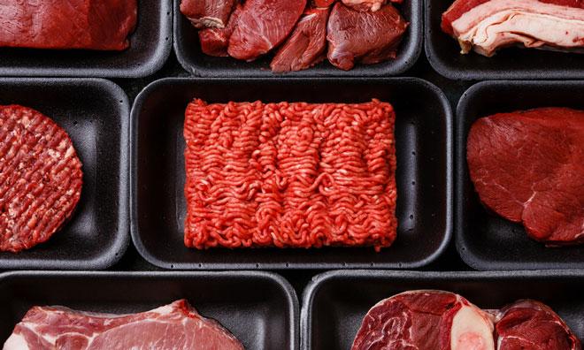 meat-oslo-psychology