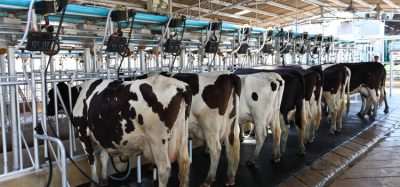 The Sustainable Dairy Partnership receives support