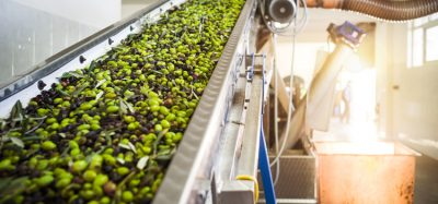 European Commission approves private storage aid for olive oil sector