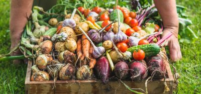 LCA of organic agriculture needs to be improved, argue researchers