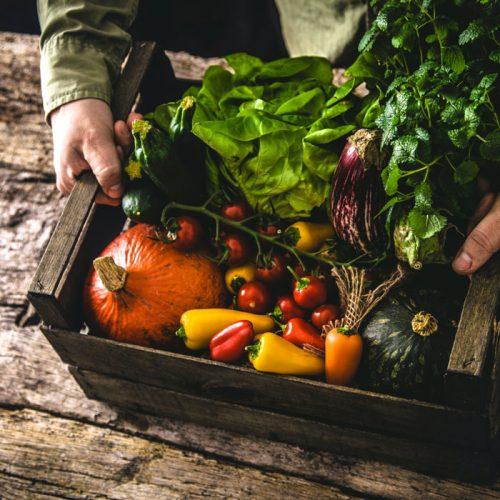 organic food in drug