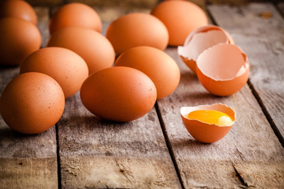 Salmonella risk reduced in eggs