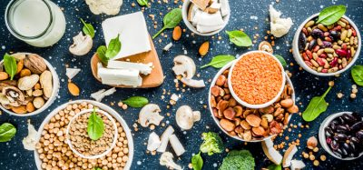 Kerry acquires plant-protein company Pevesa Biotech