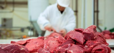 EU beef exports to Korea resume after almost 20 years