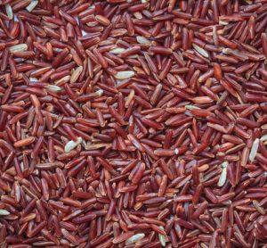 red-yeast-rice-statins