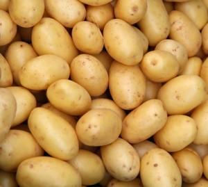 sainsbury's-potato recall