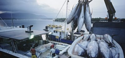 The truth behind seafood sustainability?